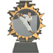 Trofeo karate cm 14