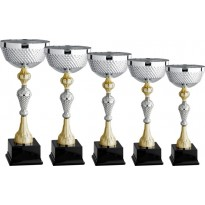 Series of 5 cups