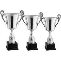 Series of 3 trophies