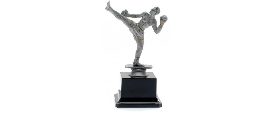 Trofei kick boxing